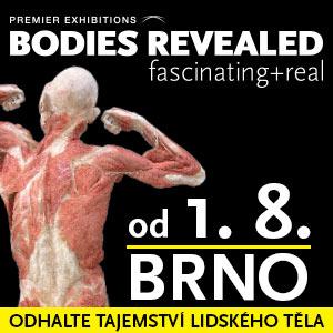 Human Body 2014